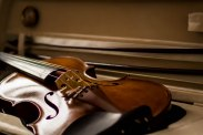 Violino Annalisa-4