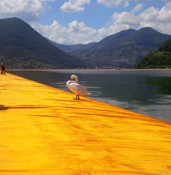 the floating piers-5